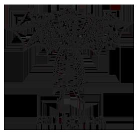 Aenigma logo
